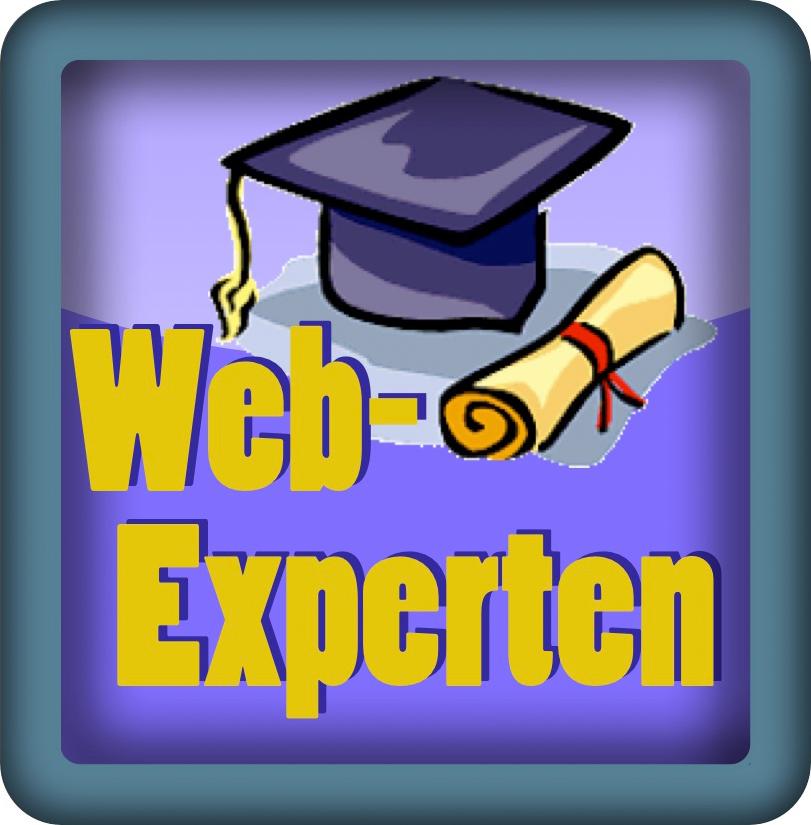 """Logo """"Die Webexperten"""""""